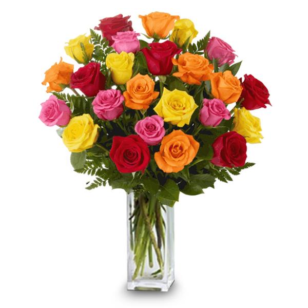 24 Long Stemmed Mixed Roses buy at Florist