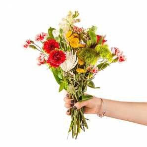 Florist's Choice I