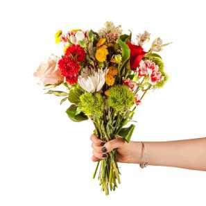 Florist's Choice II