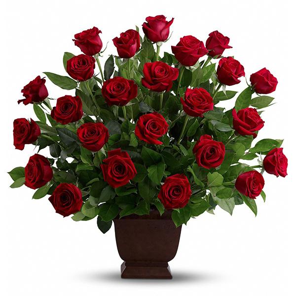 Rose Tribute buy at Florist