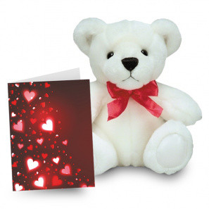 Teddy and Card Special