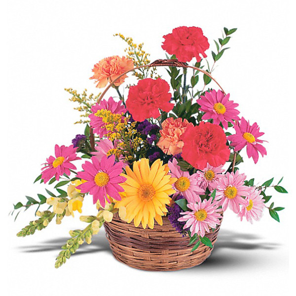 Vibrant Basket buy at Florist